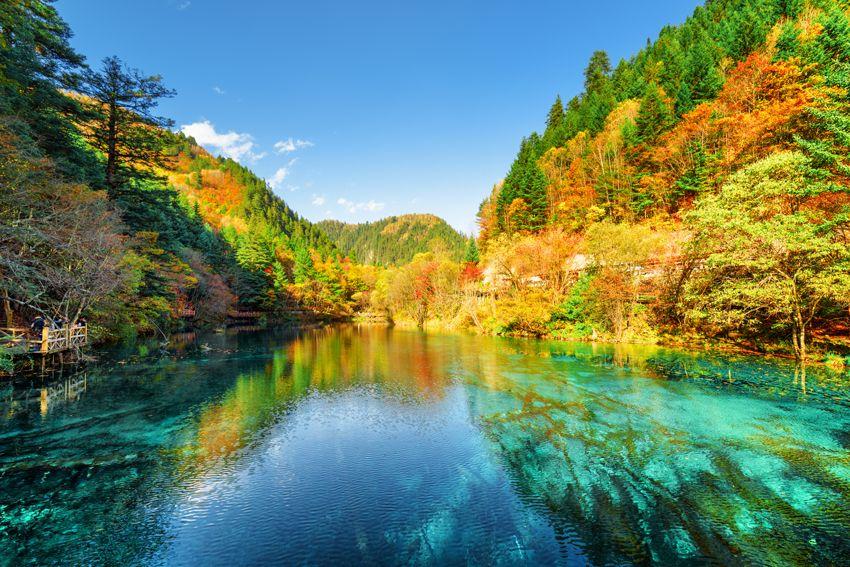 Wordt Zhen | Praktijk voor Chinese Geneeswijze | Wadenoijen | Tiel